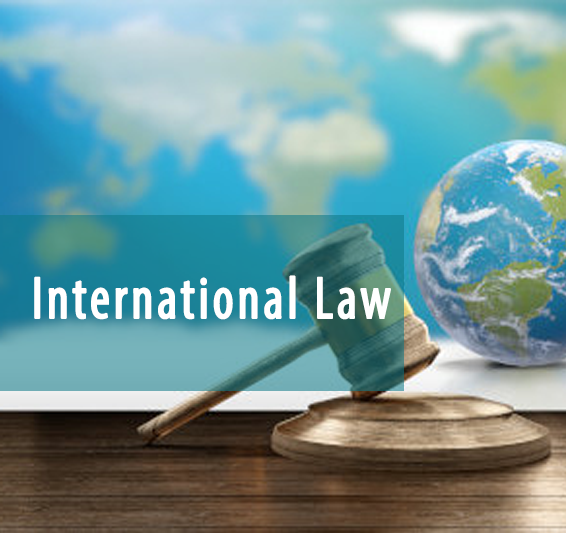 International law services